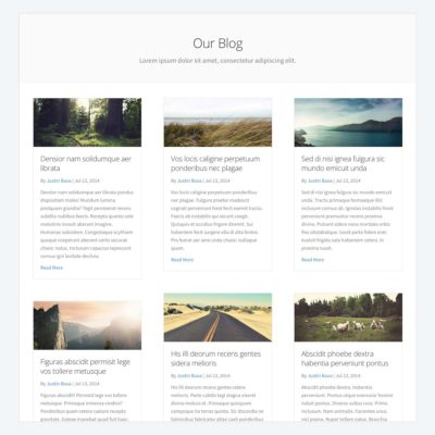 Blog Post Grid